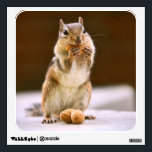"""Cute Chipmunk Eating a Peanut Wall Sticker<br><div class=""""desc"""">Photo of a cute chipmunk eating a peanut in a shell,  with another one in front of him. The peanut looks like a big smile. You can have this funny chipmunk picture printed on many different customizable products.</div>"""