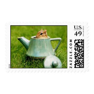 Cute Chipmunk in Teapot Postage