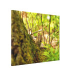 Cute Chipmunk in the Woods Gallery Wrap Canvas