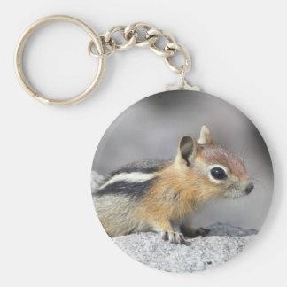 Cute Chipmunk Nature Keychain Gift