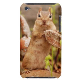 Cute Chipmunk Posing iPod Touch Case