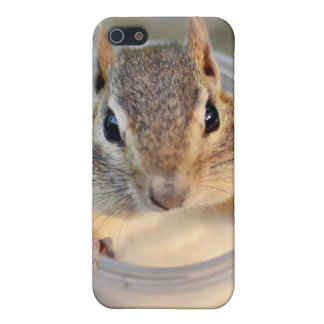 Cute Chipmunk Sitting in a Food Container Cover For iPhone SE/5/5s