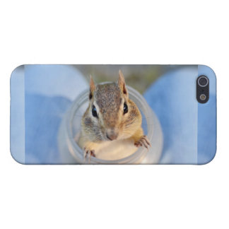 Cute Chipmunk Sitting in a Food Container iPhone SE/5/5s Case