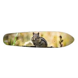 Cute Chipmunk Skate Board Decks