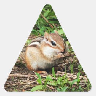 Cute Chipmunk Triangle Sticker