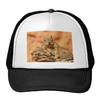 Cute Chipmunk Trucker Hat