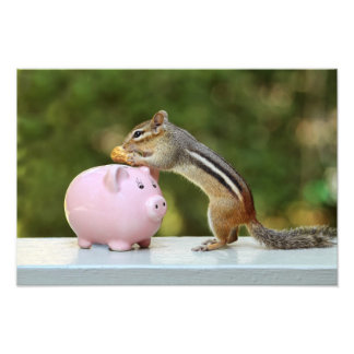 Cute Chipmunk with Funny Money Piggy Bank Picture Photograph