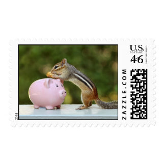 Cute Chipmunk with Funny Money Piggy Bank Picture Postage Stamp
