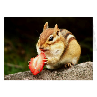 Cute Chipmunk with Juicy Strawberry Card