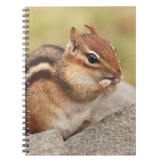 Cute Chipmunk with Snack Notebook