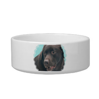 Cute Chocolate Lab Cat Water Bowls