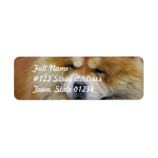 Cute Chow Chow Mailing Labels
