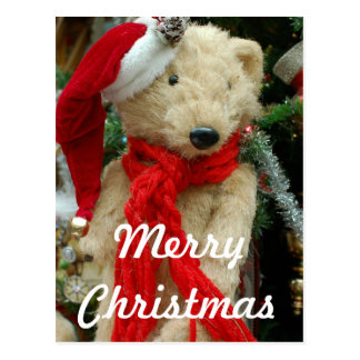 Cute Christmas Bear Photo Postcard