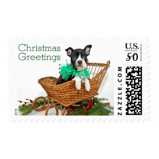 Cute Christmas Boston Terrier puppy Postage