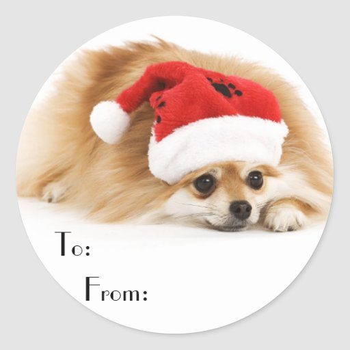 Cute Christmas Dog Gift Stickers