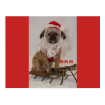 Cute Christmas Dog Postcard
