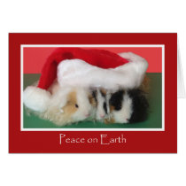 Cute Christmas Guinea Pig Card