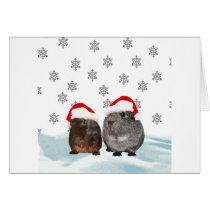 Cute Christmas Guinea pigs in Santa Hats Card