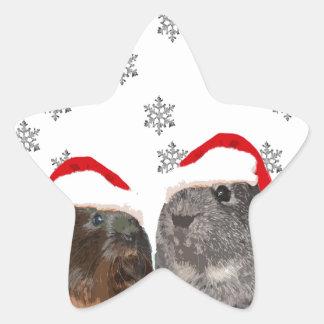 Cute Christmas Guinea pigs in Santa Hats Star Sticker