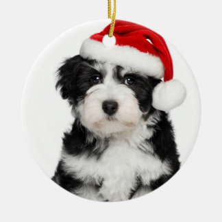 Cute Christmas Havanese Puppy Dog 2 Ceramic Ornament