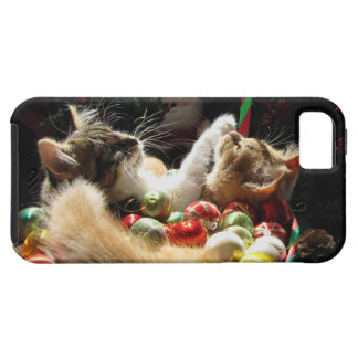Cute Christmas Kittens in Love on Xmas Eve iPhone 5 Cases