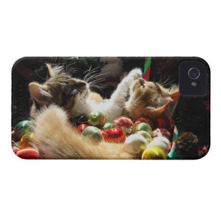 Cute Christmas Kittens in Love on Xmas Eve iPhone 4 Cases