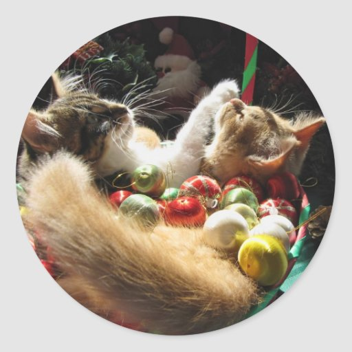 Cute Christmas Kittens in Love on Xmas Eve Round Sticker