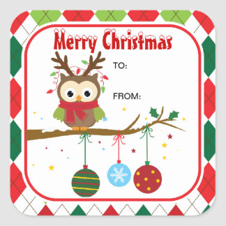 Cute Christmas Owl with Antler Gift Stickers