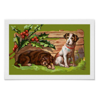 Cute Christmas Puppies Poster