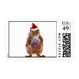 Cute Christmas Squirrel and Gift Postage Stamp