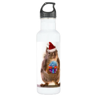 Cute Christmas Squirrel and Stainless Steel Water Bottle