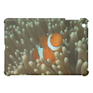 Cute Clownfish Great Barrier Reef Coral Sea Case For The iPad Mini