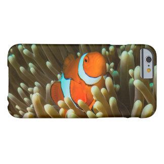 Cute Clownfish iPhone 6 Case