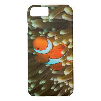 Cute Clownfish iPhone 7 Case