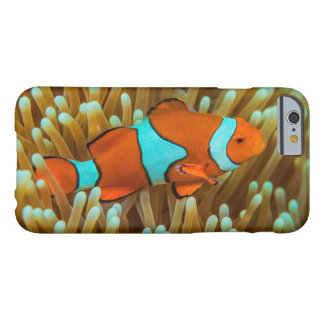 Cute Clownfish on the Great Barrier Reef Barely There iPhone 6 Case