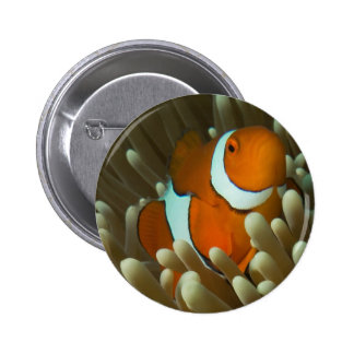 Cute Clownfish on the Great Barrier Reef 6 Cm Round Badge