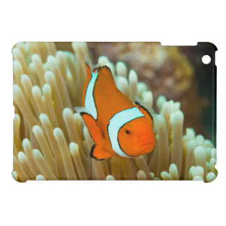 Cute Clownfish on the Great Barrier Reef Case For The iPad Mini