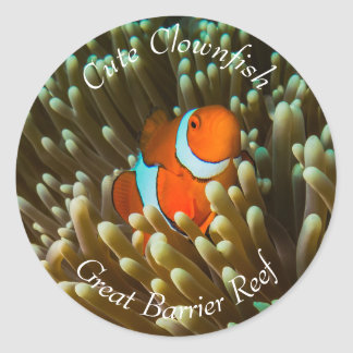 Cute Clownfish on the Great Barrier Reef Classic Round Sticker