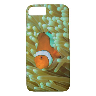 Cute Clownfish on the Great Barrier Reef iPhone 8/7 Case