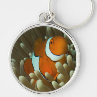 Cute Clownfish on the Great Barrier Reef Keychain