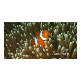 Cute Clownfish Photo Card
