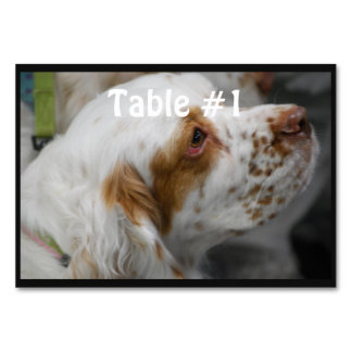 Cute Clumber Spaniel Table Card
