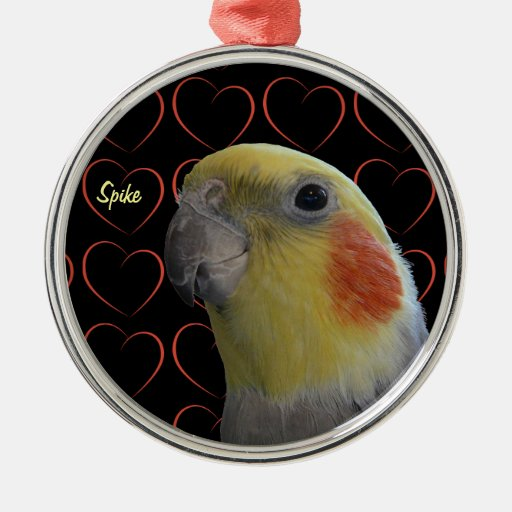 Cute Cockatiel and Hearts Round Metal Christmas Ornament