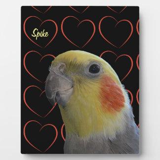 Cute Cockatiel and Hearts Plaques