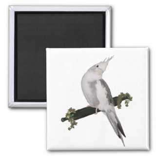 Cute Cockatiel on Ivy Perch 2 Inch Square Magnet