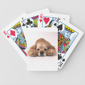 Cute Cocker Spaniel Bicycle Playing Cards