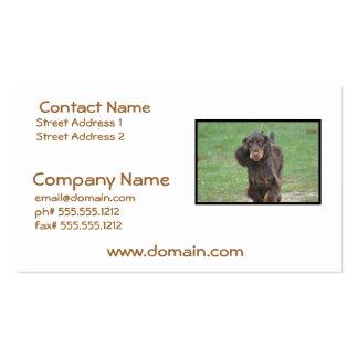 Cute Cocker Spaniel Business Card Templates