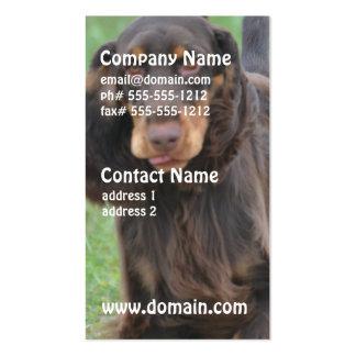 Cute Cocker Spaniel Business Cards