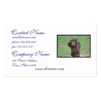 Cute Cocker Spaniel Business Card