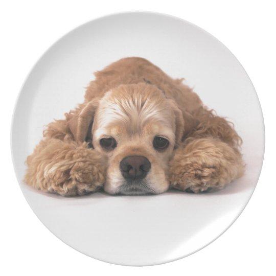 Cute Cocker Spaniel Plate